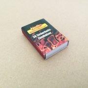 NETTO Streichholzschachtel mit 38 Stück Inhalt